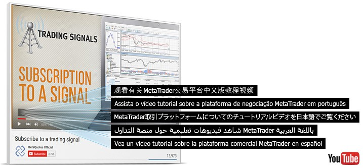 Download metatrader alpari russia vs brazil